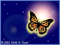 Butterfly in Dark Sky